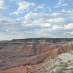 petrified_forest3