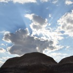 petrified_forest4